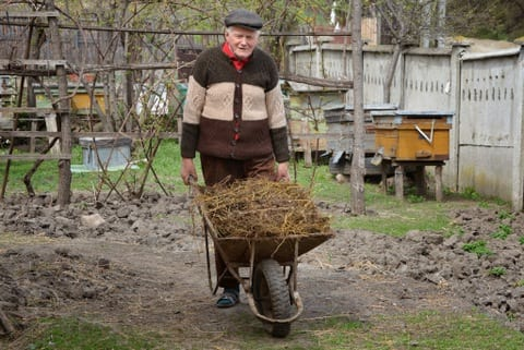 pushing manure filled wheelbarrow